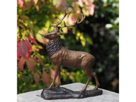 Beeld brons - Tuinbeeld - Beeld Hert - Bronzartes