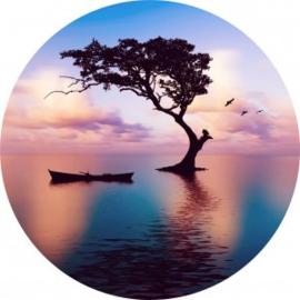 Diameter 100 - rond Glasschilderij - Boom in het water - rond schilderij fotokunst - Foto print op glas