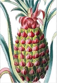 Foto op hout - Ananas