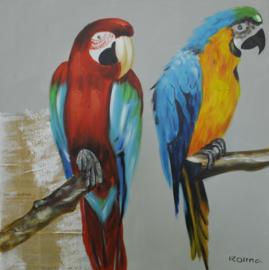 80 x 80 cm - Olieverfschilderij - Papegaaien