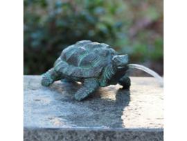 Tuinbeeld brons - fontein beeld - bronzen schildpad - Bronzartes