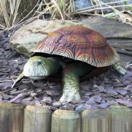 Tuinbeeld  - beeld metaal schildpad