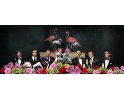 160 x 80 cm - glasschilderij - Famous people & flamingo's - schilderij fotokunst - foto print op glas