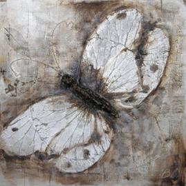 100 x 100 cm - Olieverfschilderij - Vlinder - natuur handgeschilderd