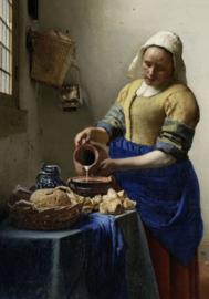 Foto op hout - Het Melkmeisje - Vermeer