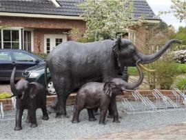 Tuinbeeld - groot bronzen beeld -  Olifant - Bronzartes