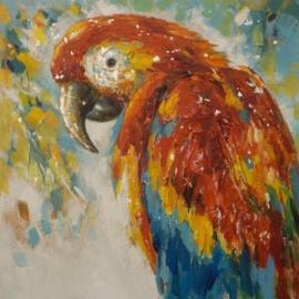 100 x 100 cm - Olieverfschilderij - Papegaai - natuur handgeschilderd