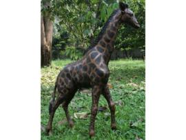 Tuinbeeld - groot bronzen beeld -  Giraf - Bronzartes