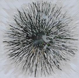 Olieverfschilderij - Paardenbloem - 100x100 cm