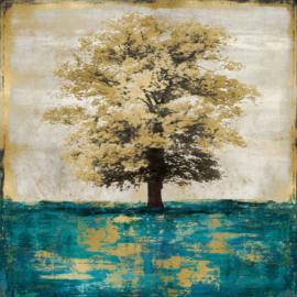 80 x 80 cm - Glasschilderij - schilderij fotokunst - boom - UV geprint - foto print op glas