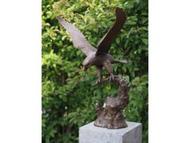 Tuinbeeld - bronzen beeld - arend