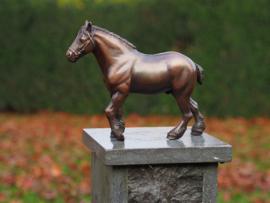 Beeld brons - Tuinbeeld - beeld paard - bronzartes - 47 cm hoog - voor huis en tuin