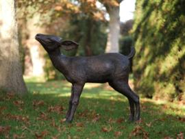 Tuinbeeld brons - Bronzen beeld - Bambi - Bronzartes