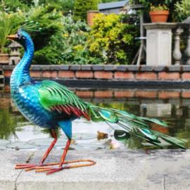 Tuinbeeld - beeld  metalen glanzende pauw