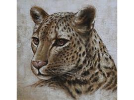 100 x 100 cm - Olieverf schilderij - schilderij luipaard - handgeschilderd