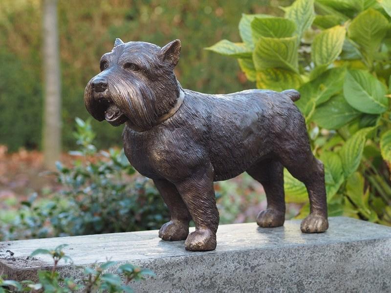 Tuinbeeld - bronzen beeld - Hond - Bronzartes