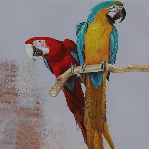 100 x 100 cm - Olieverfschilderij - Papegaaien - natuur handgeschilderd