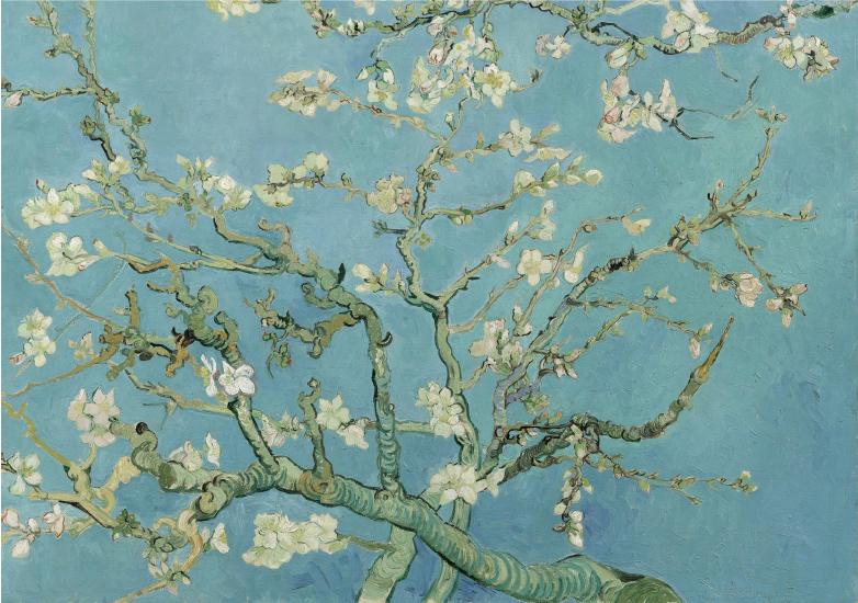 120 x 80 cm - Plexiglas schilderij natuur - Amandelbloesem - klassieke kunst afbeelding op acryl - oude meesters!