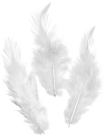 KN6621007- 16 stuks hanenveren van circa 10cm lang wit
