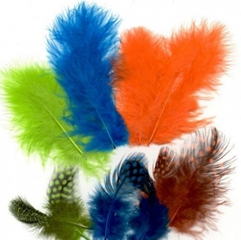 800804/2906- 18 stuks marabou & guinea verenmix felle kleuren