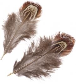 KN216617982- 1,5 gram fazantveren van 3 tot 9cm lang