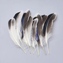 50 stuks veren grijs/wit/zwart 11 tot 16cm