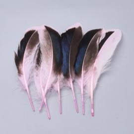50 stuks veren lichtroze/zwart 11 tot 16cm
