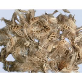 RA8515600- grote zak (10 gram) gemengde veren petit point van 4 tot 6cm lang
