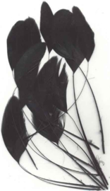TH12238/3821- 15 stuks veren stukjes van 15 tot 20cm lang zwart