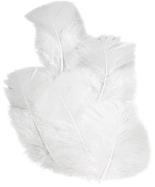 KN6622003- 16 stuks kalkoenveren van ca. 7cm lang wit