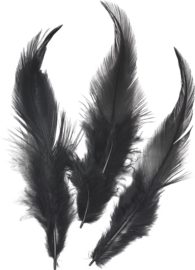 KN6621619- 16 stuks hanenveren van circa 10cm lang zwart