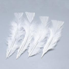 VC11- ca. 500 stuks kalkoen veren van 13 tot 16cm lang wit