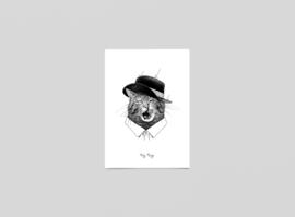 Postkaart Festival kater - Ferdy Remijn
