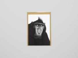 A5 prentbriefkaart Kuif Makaak - Ferdy Remijn