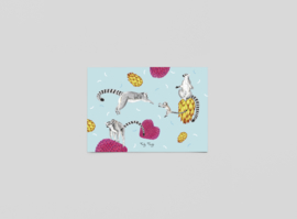 Postkaart Madagascar - Ferdy Remijn