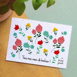 Zaaibare kaart - Tous mes vieux de bonheur! (bloemenmix)