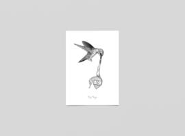 Postkaart Lagune - de safekeeper - Ferdy Remijn
