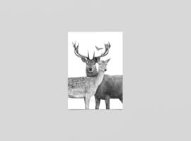 Postkaart Forever - Ferdy Remijn
