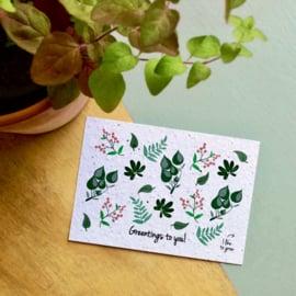 Zaaibare kaart - Greentings to you! (bloemenmix)