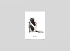Postkaart Sifaka's - Ferdy Remijn