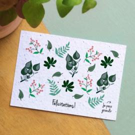 Zaaibare kaart - Félicitations! (bloemenmix)