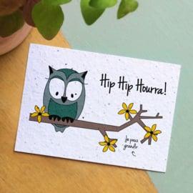 Zaaibare kaart - Hip hip Hourra! (bloemenmix)