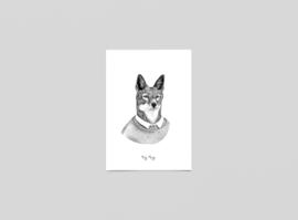 Postkaart Blijf schuldig, Ethiopische wolf - Ferdy Remijn