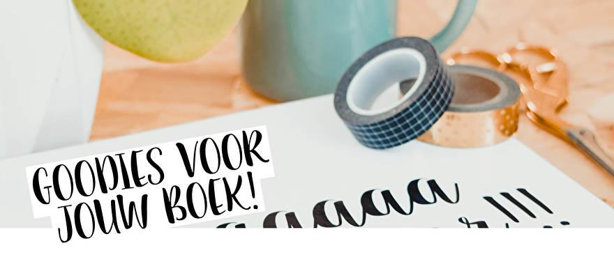 Stickers voor je invulboek