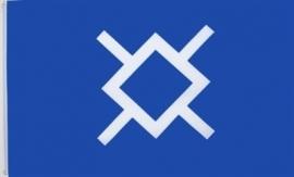 Vlag Amerika Northern Cheyenne