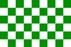 Geblokte supporters vlag groen/wit 90 x 150