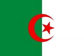 Algerijnse Vlag (Groot 150 x 250 cm)