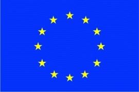 Europa grote vlag XXXL 150 x 250 cm