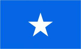 Bonnie Blue vlag