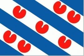 Provincievlaggen Provincie Friesland